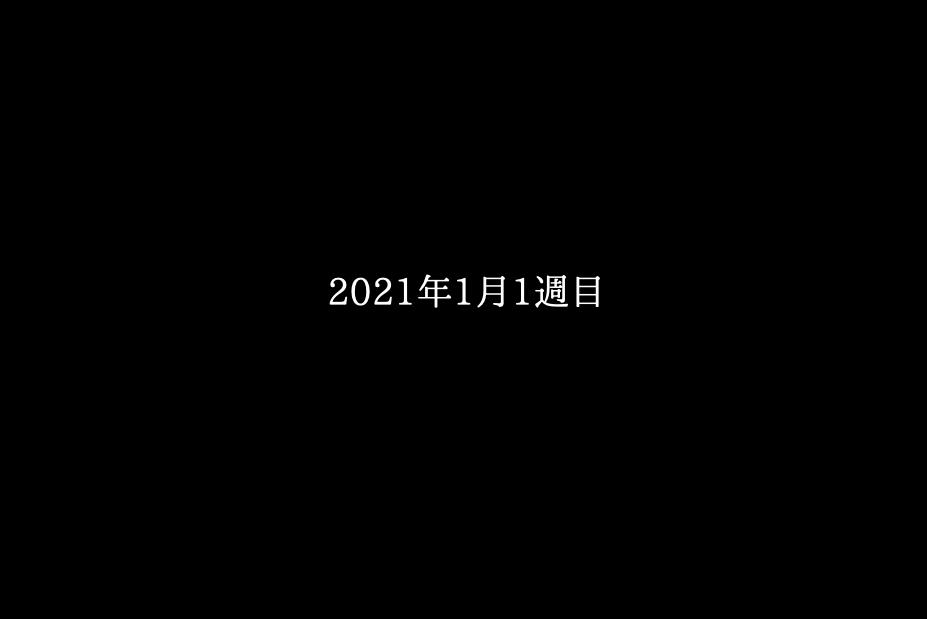 日記:2021年1月1週目